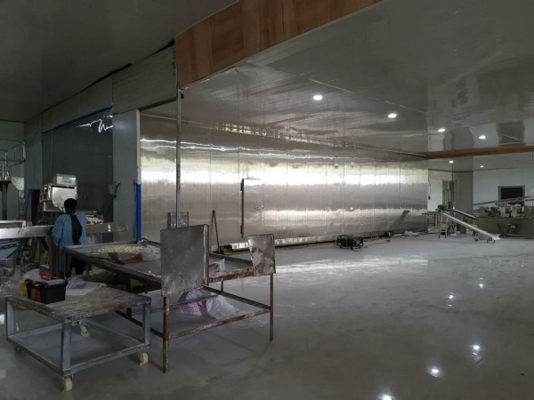1.5吨速冻水饺双螺旋隧道